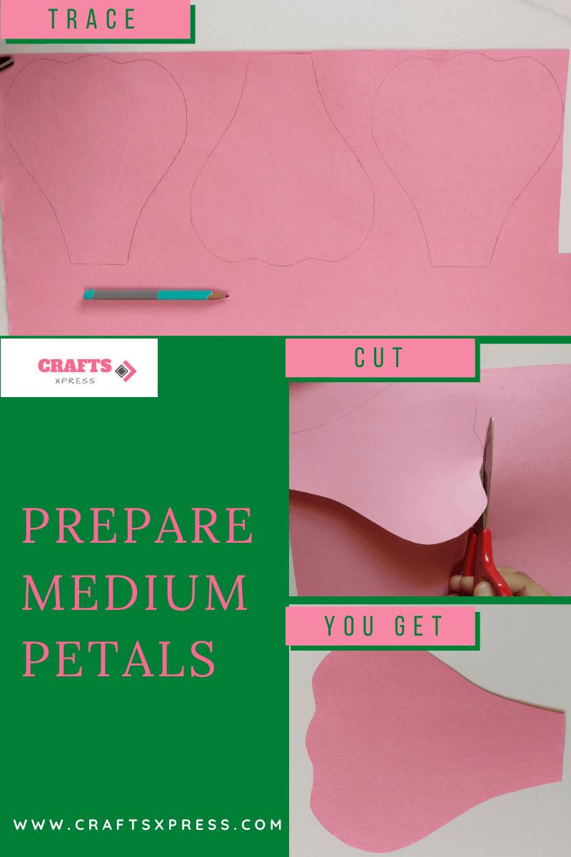 Prepare medium sized petals for giant rose
